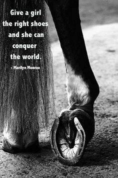 give a girl the right pair of shoes horse - Google Search