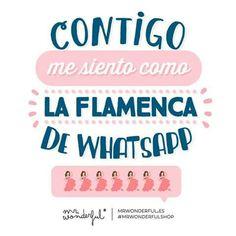 Contigo me siento como la flamenca de whatsapp Mr Wonderful