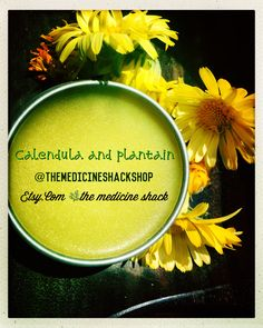 🌿Fresh batch of: #plantain and #calendula #salve  A soothing and #healing #salve. Rub into sore #muscles, apply to minor #cuts, scrapes, insect #bites, rashes, chapped lips, chafed skin, bruises, and other irritations. Regardless of where your inflammation occurring, calendula can significantly reduce the discomfort. #etsy #skincare #ointment #hikers #firstaidkits #themedicineshackshop