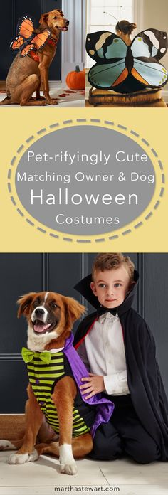 This year, take your family's best friend out with you on Halloween! Here are some of our favorite ideas for dog costumes...with the human version to match.