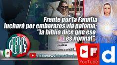 Frente por la Familia luchará por embarazos vía paloma