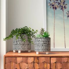 Online shopping for Planters - Pots, Planters & Container Accessories from a great selection at Patio, Lawn & Garden Store. Contemporary Planters, Modern Planters, Large Planters, Indoor Planters, Fall Planters, Metal Window Boxes, Window Planter Boxes, Ceramic Pots, Terracotta Pots