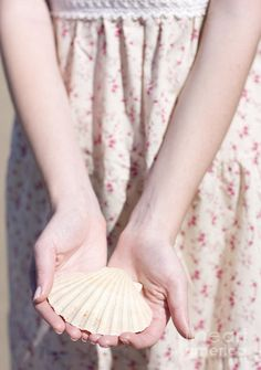 Human Hands Carefully Carrying A Cockle Seashell In A Environmental Conservation Effort by Ryan Jorgensen