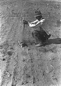 This man exemplifies life in 1942 Oklahoma. While the rest of America was gearing up for WWII and the Depression was winding down, this woman and many other people in the west were still trying to recover from the devastation caused by the dust and drought. -MD