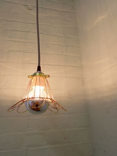 Industrial Hanging Cage Lamp Light with Mirrored Bub by GlassRedux