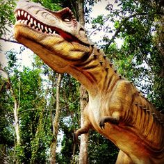 Jurassic Parque @ La Marquesa Forest Park  http://www.discoveringpuertorico.com/2013/03/jurassic-parque-la-marquesa-forest-park/