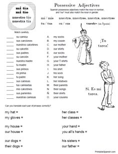 Possessive Adjectives Worksheet 1 -- FREE at PrintableSpanish.com