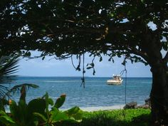 The Big Corn Island in Nicaragua. I've wanted to go here for some time now.