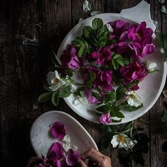 I'm in the kitchen today Turning the left over wild roses from yesterday into syrup because they smell so strong I want to savour it. twiggstudios