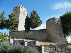 The castle of Sos del Rey Católico (Cinco Villas, Zaragoza, Spain)