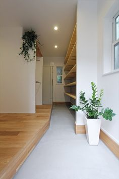 Zen House, House 2, House Entrance, New Homes, Stairs, Flooring, Home Decor, Home Entrances, Interiors