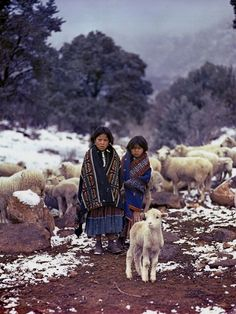 Navajo Herding Sheep in the Snow. Photo by Barry M. Native American Pictures, Native American Women, American Indian Art, Native American History, Native American Indians, Navajo Culture, Navajo People, Hobby Photography, People Of The World