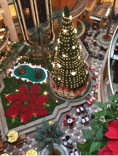 The Biggest Christmas tree in cairo #city_stars Designed and installed by #jystudios  #shereenfaghal Cairo City, Big Christmas Tree, Studios, Stars, Holiday Decor, Design, Home Decor, Decoration Home, Room Decor