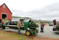 Thank you to Tim Mollica of Christmas Trees of Vermont for donating these beautiful trees for our cottages and campus buildings! Your generosity keeps the magic of the season alive for us all!