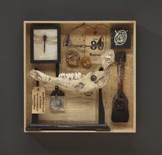 Cabinet of Curiosities:  Box #7 - Wendy Aikin