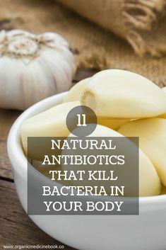 11 Natural Antibiotics That Kill Bacteria in Your Body – Organic Medicine Book - Health Detox Natural Herbs, Natural Healing, Natural Oil, Natural Foods, Natural Products, Holistic Healing, Natural Beauty, Natural Detox, Natural Home Remedies