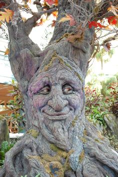 A True Green Man. But who photo-shopped you.to Face ! Weird Trees, Tree People, Tree Faces, Tree Carving, Unique Trees, Green Man, Land Art, Tree Art, Garden Art