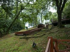 Parbuckling the guns up the slope - Fort Siloso, Singapore