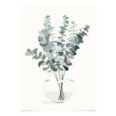 Kortkartellet Botanica Poster Eucalyptus -