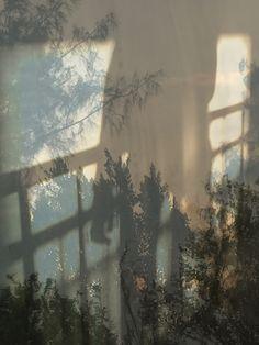 Beyond Here is Nothing: le nouveau livre de Laura El-Tantawy - L'Œil de la photographie