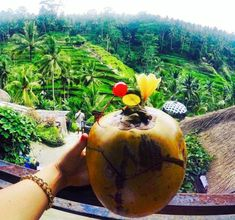 The Best Bali Day Trip: Waterfalls and Rice Terraces in Ubud – JetsetChristina