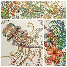 263 Best Grown Up Coloring Gallery Images On Pinterest