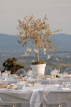 Outdoor Table and Potted Tree with Lanterns