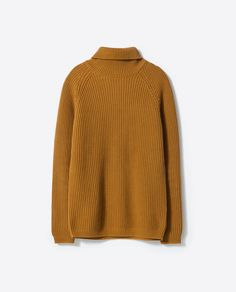 POLO NECK SWEATER-Sweaters and cardigans-MAN | ZARA United States