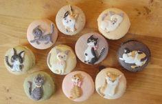 cute cats macarons :)