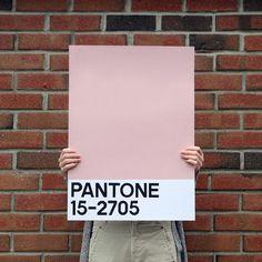 DIY pantone poster gammelrosa