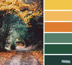 59 Pretty Autumn Color Schemes { Green + Orange + Yellow + Mustard } Pretty Autumn Color Schemes { Green + Orange + Yellow + Mustard } A pretty colour palette of blue and yellow. To get you started. Orange Color Schemes, Fall Color Schemes, Orange Color Palettes, Color Schemes Colour Palettes, Green Colour Palette, Green Colors, Autumn Color Palette, Decorating Color Schemes, Bedroom Colour Schemes Green