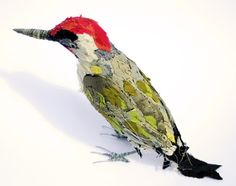 Woodpecker - Abigail Brown