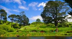 Explore the Hobbiton Movie Set on a Private Luxury Tour from Auckland