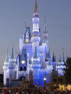 Christmas lights at Disney World, Florida