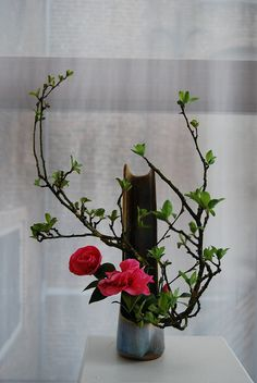 Ikebana by Magda Goudriaan by Otomodachi, via Flickr