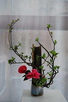 Ikebana by Magda Goudriaan by Otomodachi, via Flickr