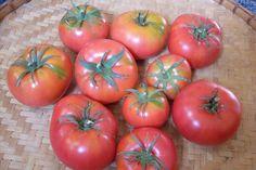 Pink Beefsteak Tomatoes
