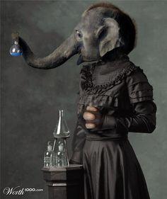 Elephant scientist..ha ha! #Elephant #Scientist