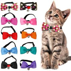Cute Cat Bow Tie Dog Necktie Puppy Kitten Collar Bowknot With Bell Adjustable For Small To Medium Dogs Cats Kitten Collars, Adventure Cat, Cat Bow Tie, Pet Paws, Cat Accessories, Cute Bows, Pet Clothes, Dog Gifts, Kittens Cutest