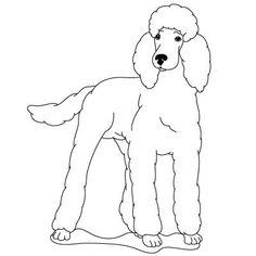 How to Draw a Poodle   Fun Drawing Lessons for Kids & Adults je vais utiliser ce modèle pour dessiner Litchy