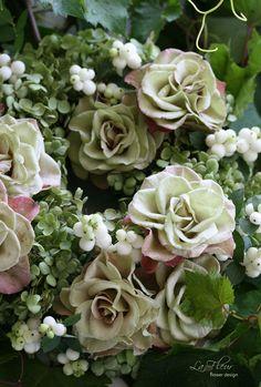 481...open rose