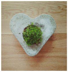 Betonowe serce z rośliną Nr.1
