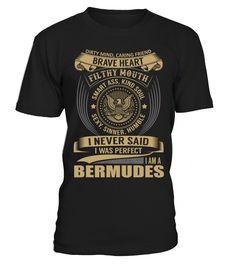 BERMUDES - I Nerver Said