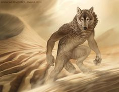 The Pathfinder by ~Kyndir on deviantART