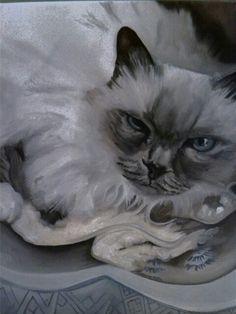 Cat in progress Sold