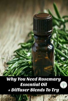 Rosemary essential oil is a well known, well love scent! Try some of these diffuser blends to see what your new favorite will be!  via @homesteadhippy