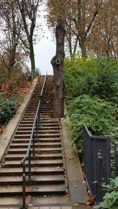 """See 563 photos from 5184 visitors about gardens, flowers, and trails. """"Parc de Bercy has many areas to sit down and enjoy, keep an eye out for the. France Landscape, Grand Paris, Railroad Tracks, Parisian, Trail, Gardens, City, Garden, Park"""