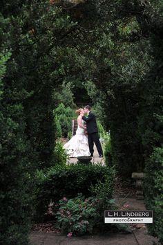 The Formal Gardens at Raspberry Plain Formal Gardens, Happily Ever After, Raspberry, Wedding Dresses, Bride Dresses, Bridal Gowns, Alon Livne Wedding Dresses, Wedding Gowns, Raspberries