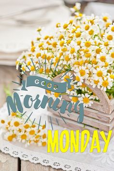 .. ❤️ Happy Monday Morning, Gd Morning, Good Monday, Happy Day, It's Monday, Mondays, Good Morning Messages, Good Morning Greetings, Good Morning Wishes