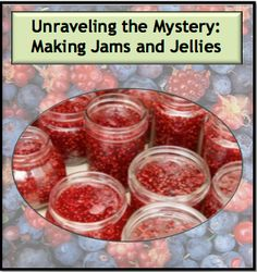Unraveling the Mystery: Making Jams and Jellies